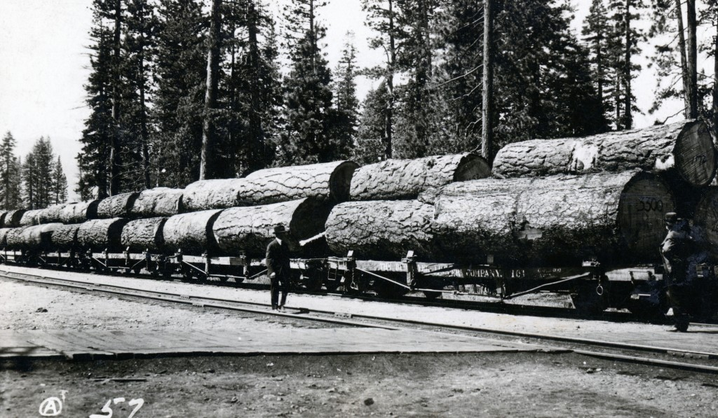 log train Camp B