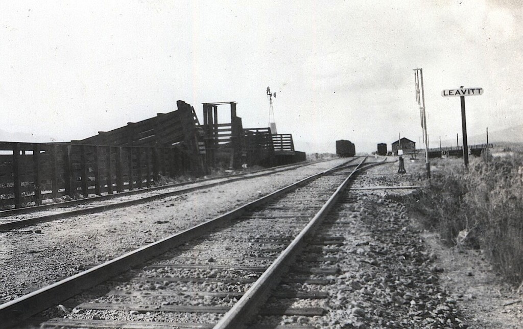 Stock corrals at Leavitt, circa 1922.