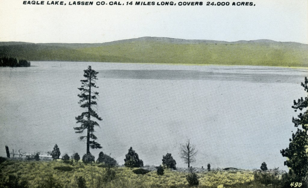 Notice how the water in this 1917 postcard is in the trees at the current marina site.
