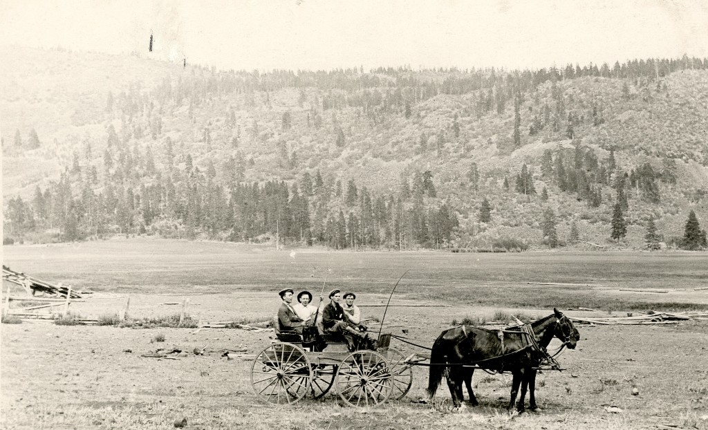 Papoose Meadows, 1914.