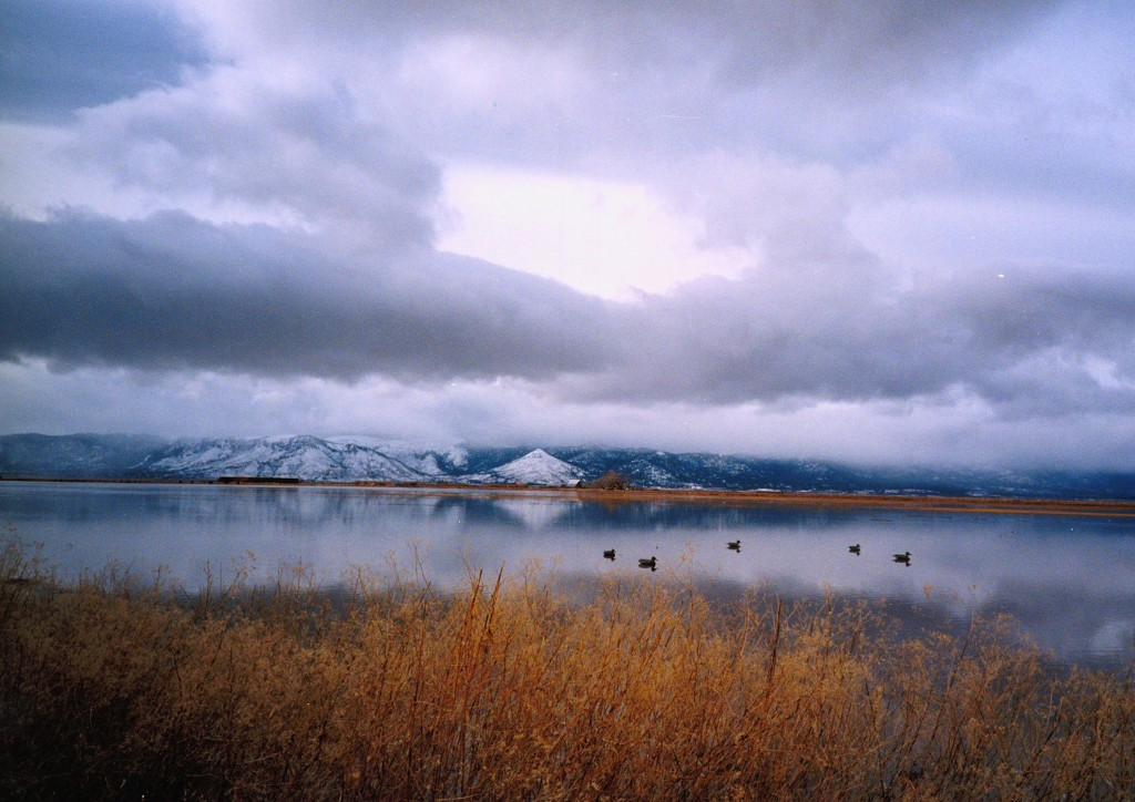 Honey Lake, from Tanner Ranch, 1997.