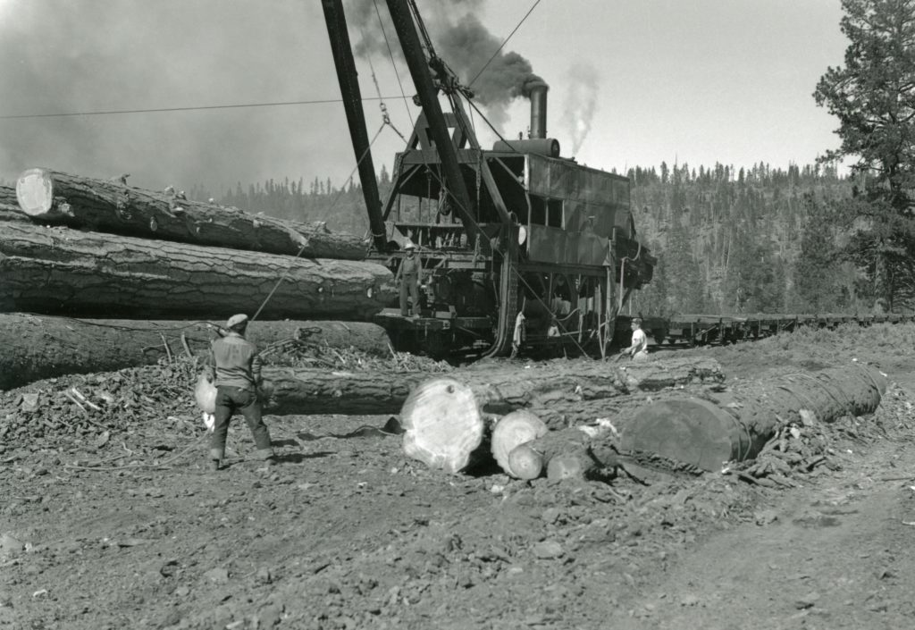 Loading logs with a McGiffert, at McCoy Flat, 1952.