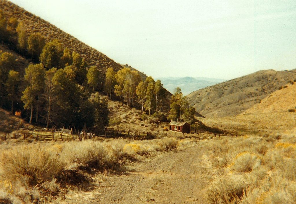 Wild Horse Canyon, September 27, 1984