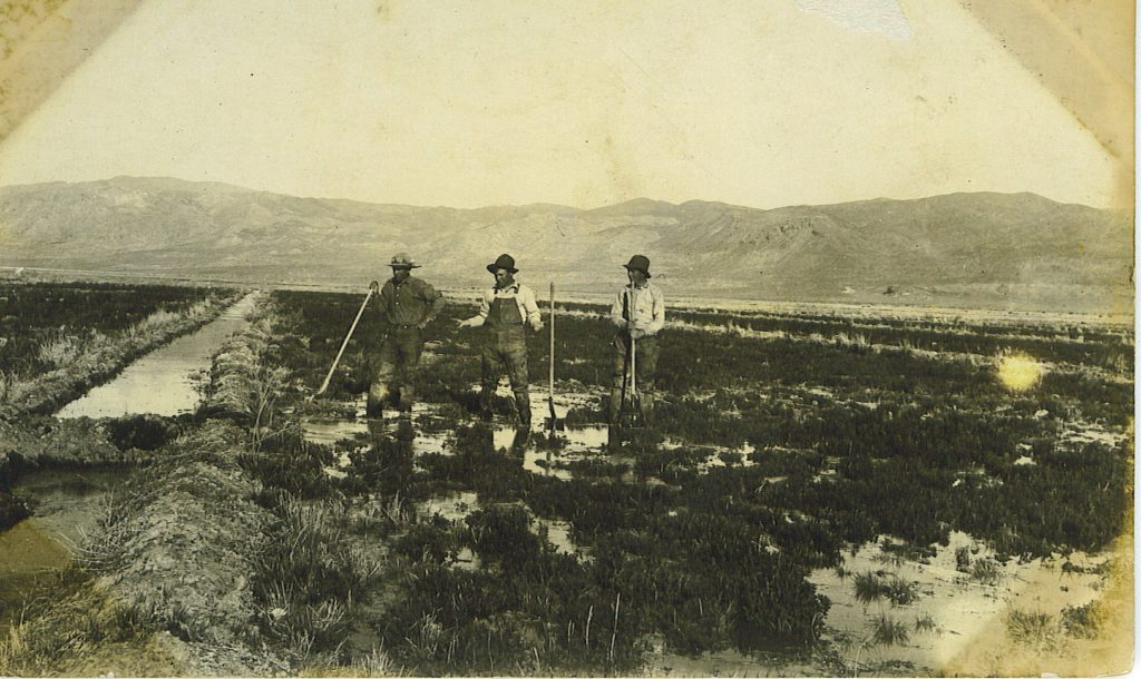 The Zarbock Brothers on their desert homestead near Stacy. Courtesy of Pam Zarbock Bell