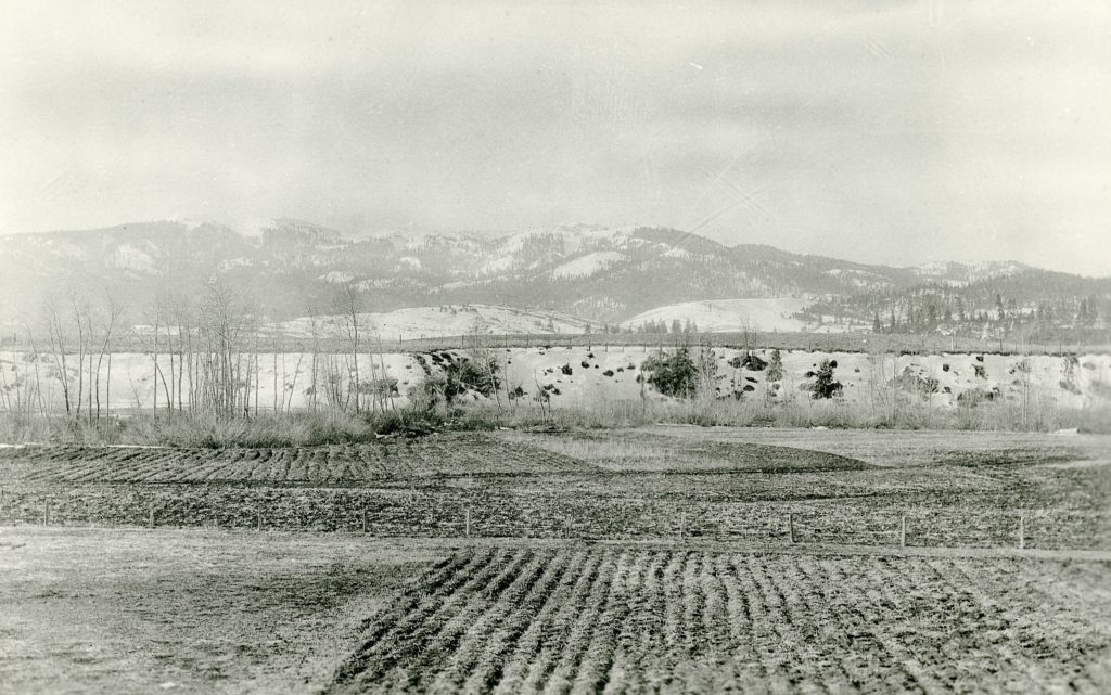 A view of Diamond Mountain, from Lassen High School's agriculture fields, 1916. Courtesy of D.M. Durst Collection